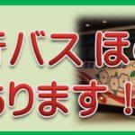 豊橋⇔新宿夜行バス ほの国号格安チケットあります!