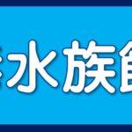豊橋駅から名古屋港水族館へ(*'▽')