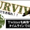 SNS運用代行します! | Twitterも画像で勝負。Twitterカードを使おう!